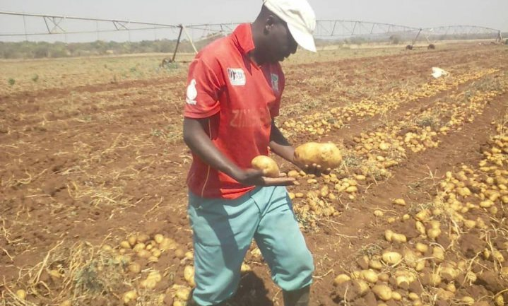 Dr. Agbugba: 'COVID-19 Pandemic has reaffirmed the need to develop Nigeria's agriculture sector'